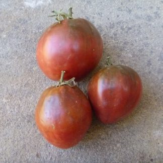Brad's Black Heart Tomato Seed
